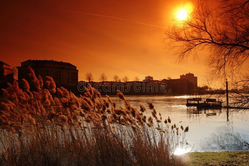 Seine river near paris royalty free stock photos
