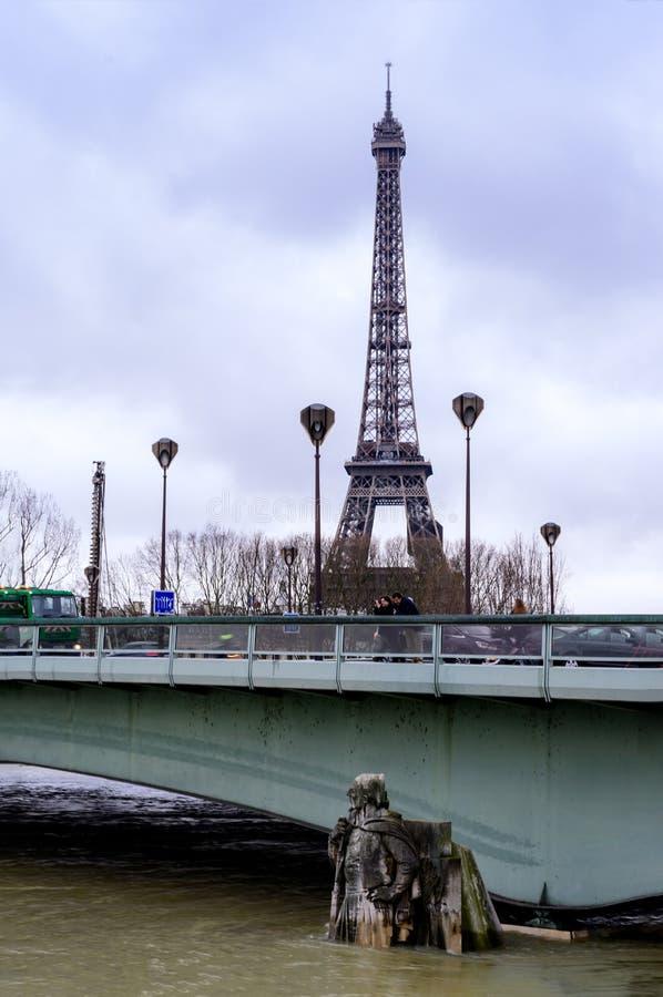 Seinen i Paris i flod royaltyfri foto