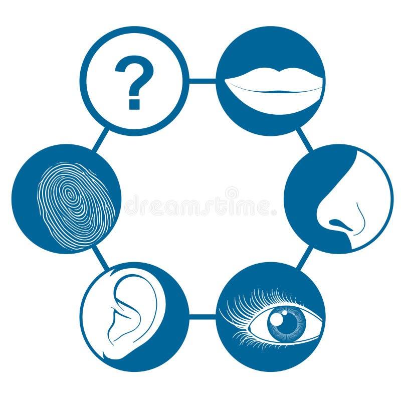 Seis ícones dos sentidos ilustração stock
