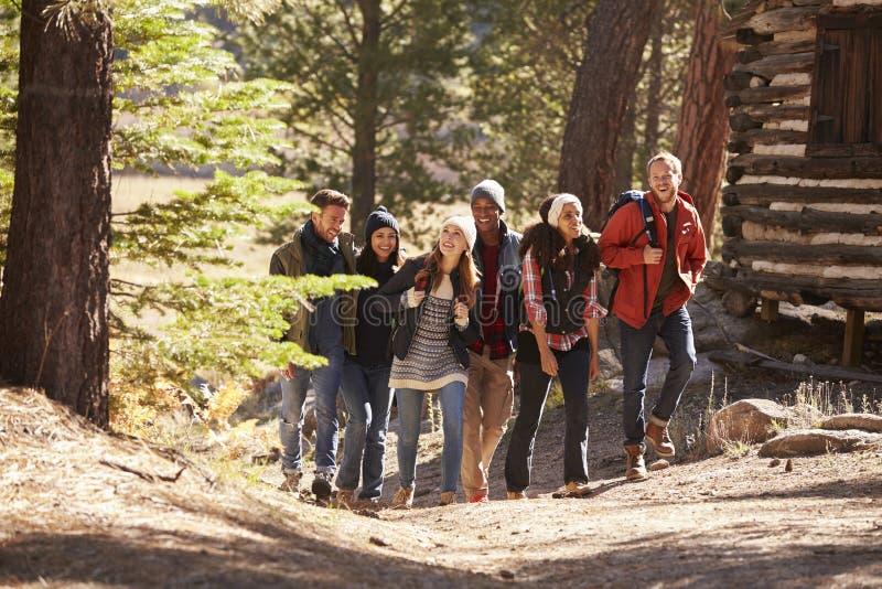 Seis amigos que caminan en la trayectoria de bosque más allá de una cabaña de madera fotos de archivo