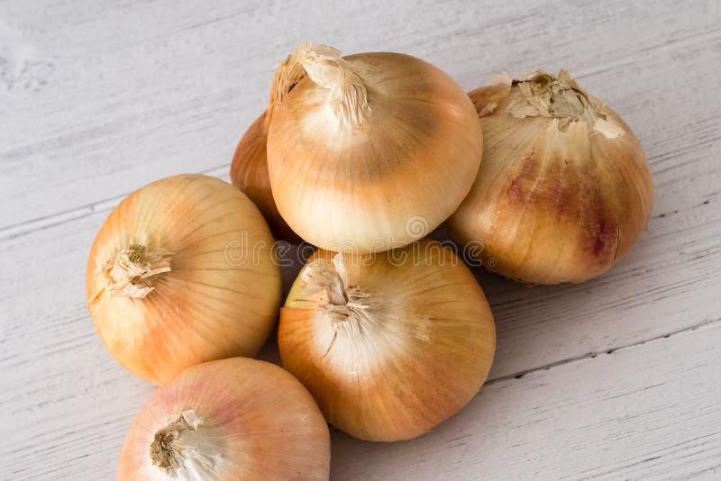 Seis cebollas producidas escocés de oro una de sus cinco un día en la consumición sana imagenes de archivo
