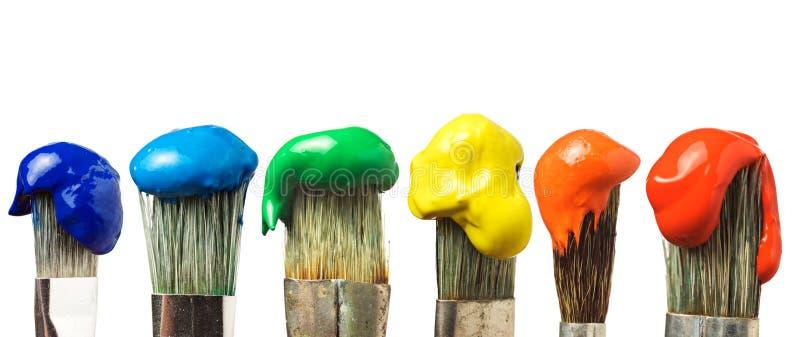 Seis escovas com pintura imagem de stock royalty free