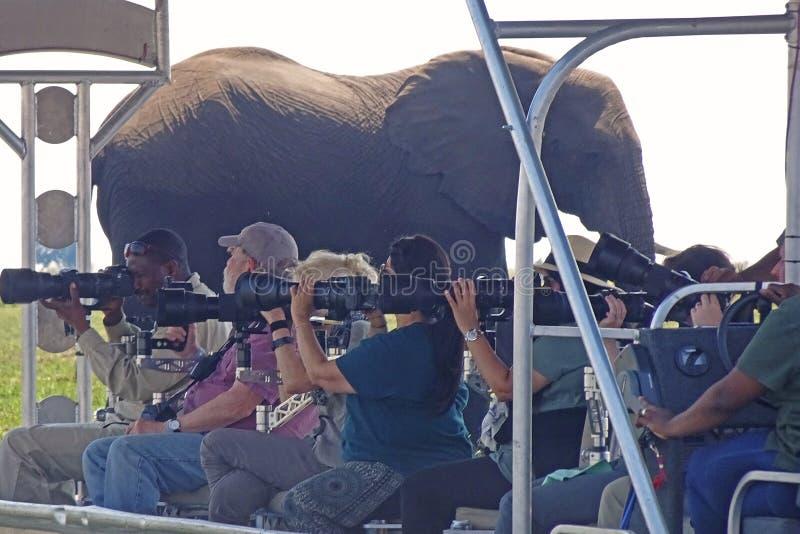 Seis fotógrafos apuntan las lentes grandes foto de archivo libre de regalías