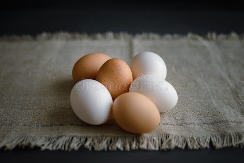 Seis huevos en una lona en un fondo oscuro fotos de archivo libres de regalías