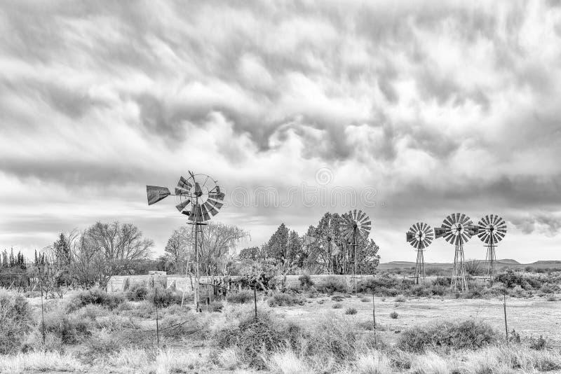Seis moinhos de vento debombeamento beteen Vosburg e Britstown monocromático foto de stock