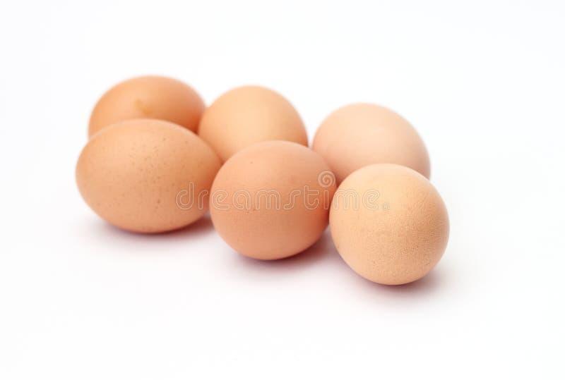 Seis ovos frescos imagens de stock royalty free