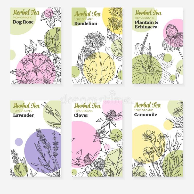 Seis plantillas del paquete para la infusión de hierbas o el cosmético natural ilustración del vector