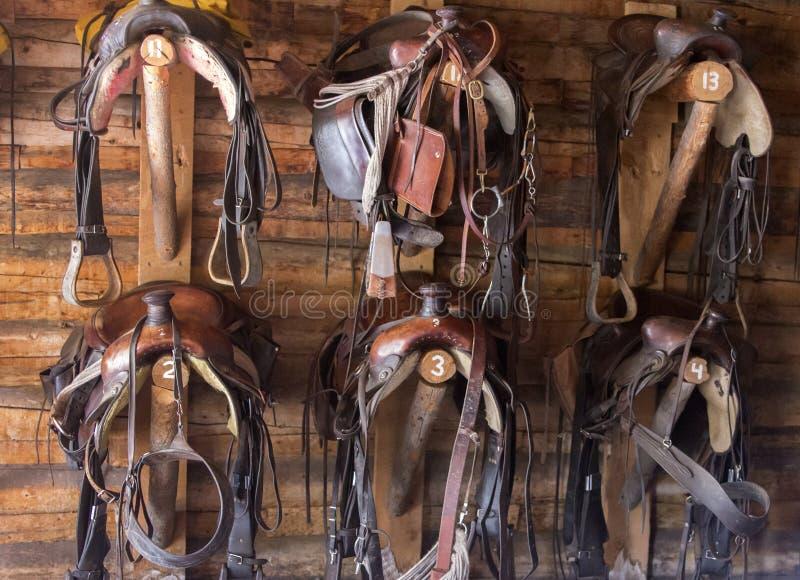 Seis selas e freios na aderência compram, Wyoming fotografia de stock