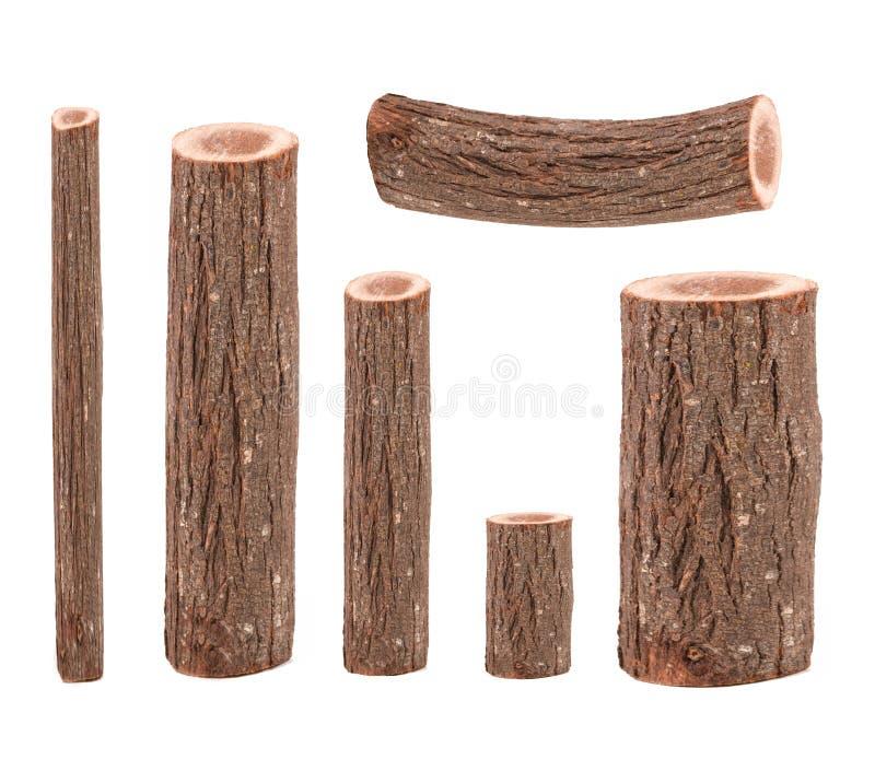 Seis troncos de árbol imágenes de archivo libres de regalías