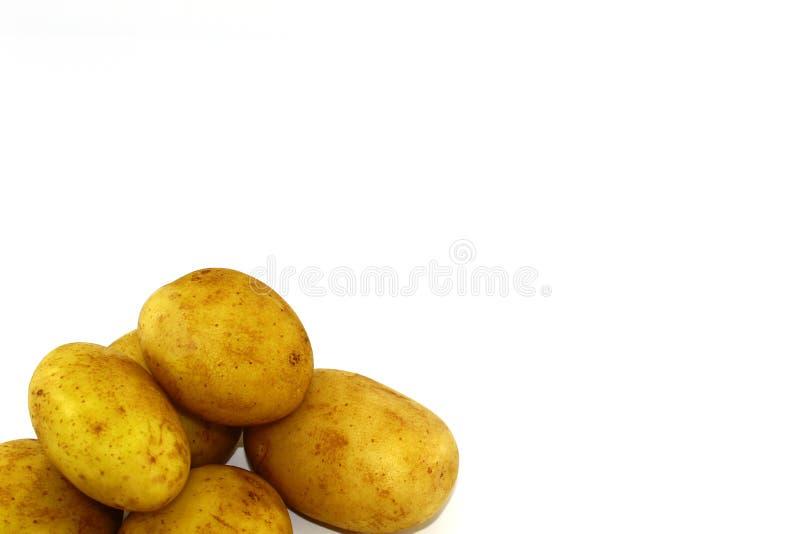 Seis tubérculos da batata limpos no fundo branco foto de stock royalty free