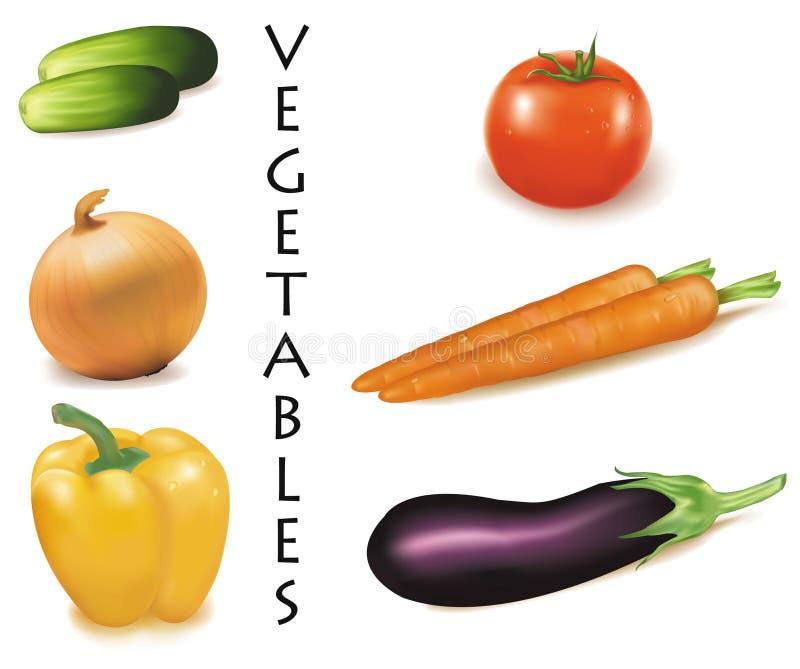 Seis vegetais coloridos. ilustração stock