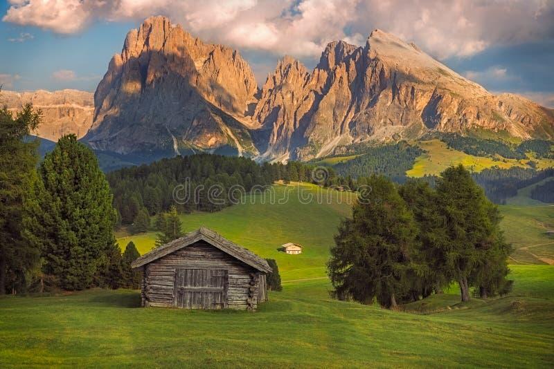 Seiser Alm con il gruppo di Langkofel, Tirolo del sud, dolomia, Italia immagine stock