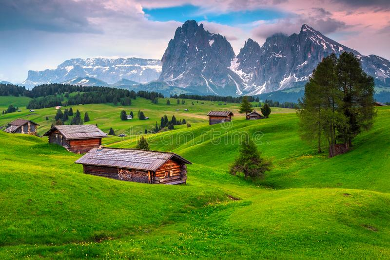 Seiser Alm resort and wooden chalets at sunset, Dolomites, Italy. Alpe di Siusi - Seiser Alm with Sassolungo - Langkofel snowy mountain group at sunset. Amazing stock image