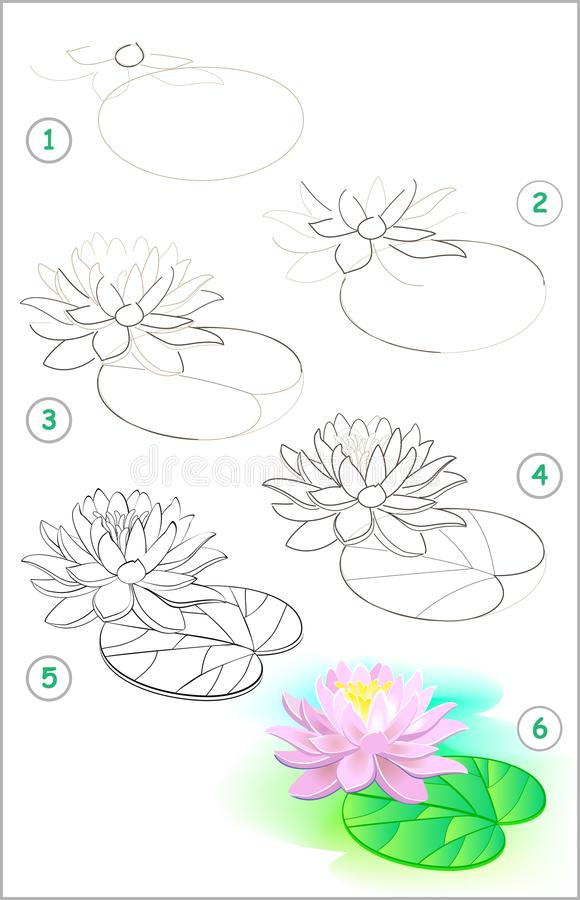 Seite zeigt, wie man Schritt für Schritt lernt, eine Seeroseblume zu zeichnen Sich entwickelnde Kinderfähigkeiten für das Zeichne vektor abbildung