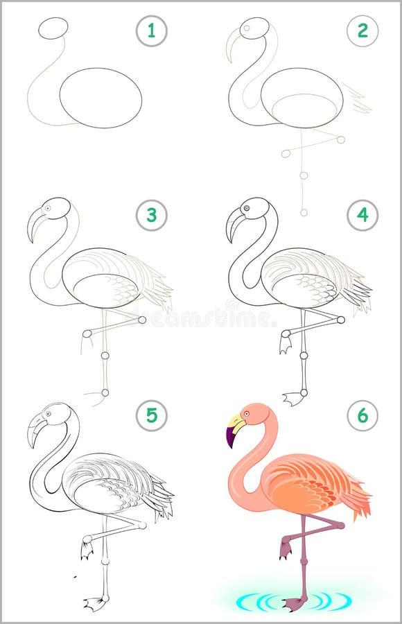 Seite zeigt, wie man Schritt für Schritt lernt, einen netten Flamingo zu zeichnen Sich entwickelnde Kinderfähigkeiten für das Zei vektor abbildung