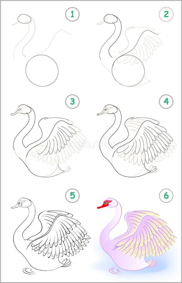 Seite zeigt, wie man Schritt für Schritt lernt, einen netten Schwan zu zeichnen Sich entwickelnde Kinderfähigkeiten für das Zeich stock abbildung