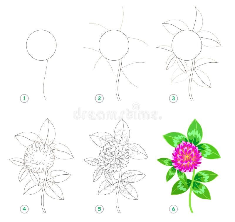 Seite zeigt, wie man Schritt für Schritt lernt, schönen Blumenklee zu zeichnen Sich entwickelnde Kinderf?higkeiten f?r das Zeichn lizenzfreie abbildung