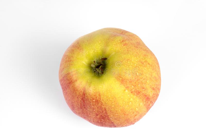 Seitenansicht auf einem isolierten reifen, bunten, bunten Bio-Apfel lizenzfreies stockbild