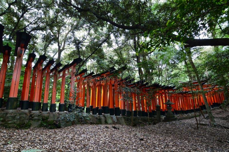 Seitenansicht des Berg-torii Weges Schrein Fushimi Inari Taisha kyoto japan stockfotos