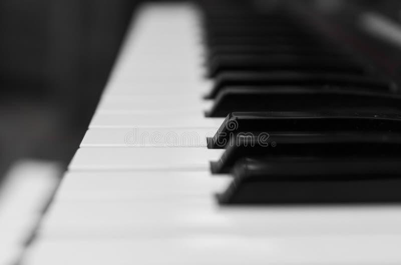 Seitenansicht des synthesizerklavierschlüsselhalters Professionelle elektronische Midi-Tastatur mit Schwarzweiss-Schlüsseln stockbilder