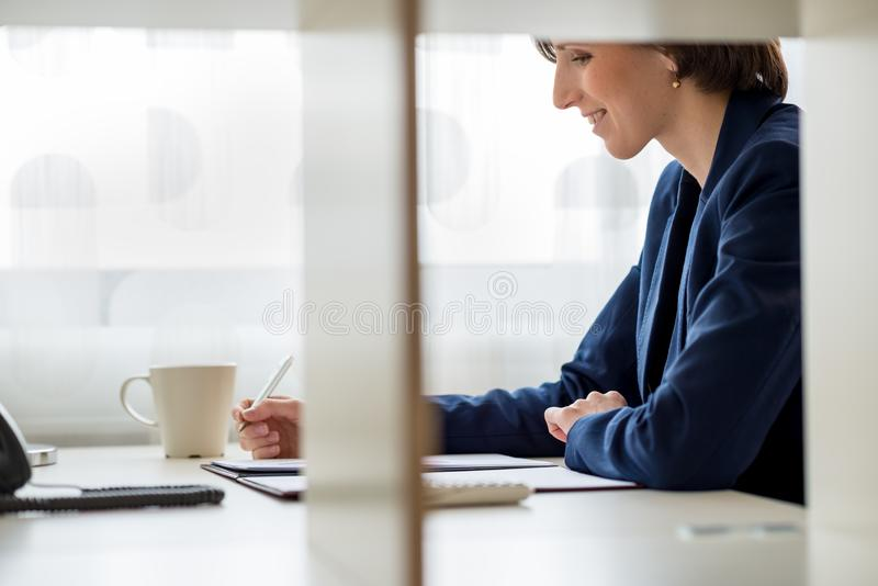 Seitenansicht einer lächelnden jungen Geschäftsfrau lizenzfreies stockbild