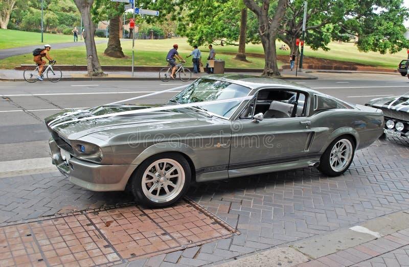 Seitenansicht eines klassischen silbernen Autos gemietet als Teil Hochzeit Cortege Modell 1967 Mustangs GT500 Shelby stockbild
