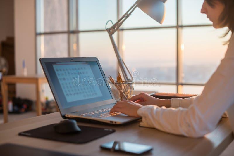 Seitenansichtfoto eines weiblichen Programmierers, der Laptop, Funktion, Schreiben, das Internet surfend am Arbeitsplatz verwende stockfotografie