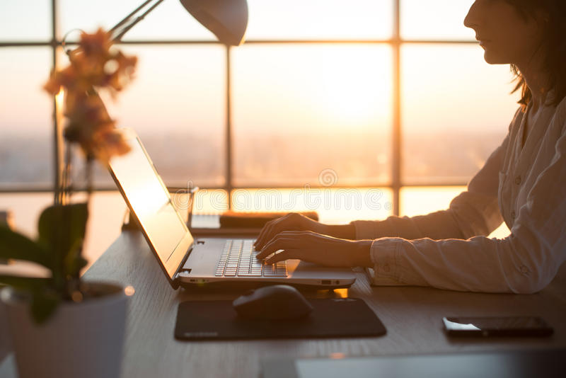 Seitenansichtfoto eines weiblichen Programmierers, der Laptop, Funktion, Schreiben, das Internet surfend am Arbeitsplatz verwende lizenzfreies stockfoto