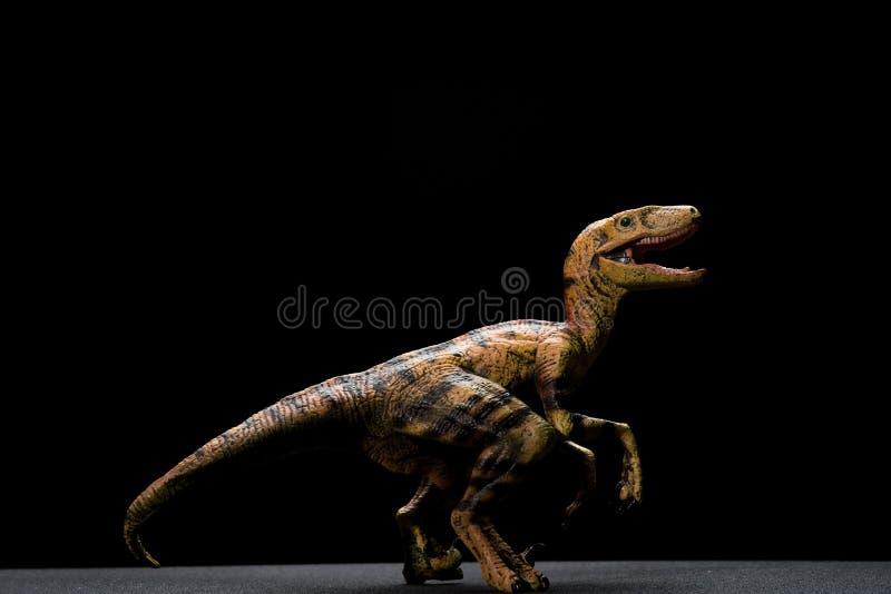 Seitenansichtgelb Velociraptorspielzeug stockfoto