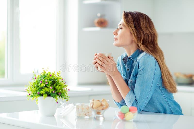 Seitenansichtporträt des Profils von ihr sie schön aussehendes reizendes reizend attraktives ruhiges träumerisches braunhaariges  lizenzfreies stockfoto