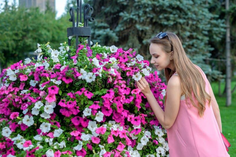 Seitenprofil von riechenden Blüten der jungen Frau stockbilder