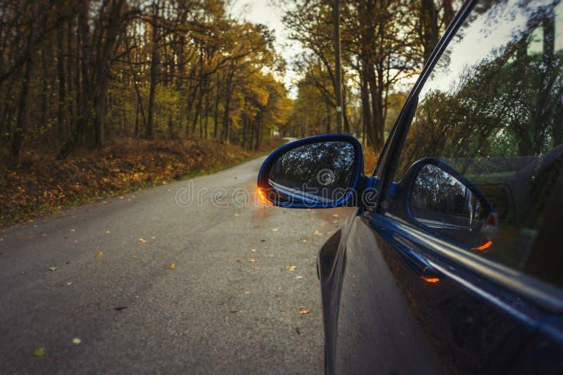 Seitenspiegelblinker Wendezeiger auf dem Spiegel verließ und blaues Auto auf der Straße im Herbstwaldauto steht am Rand lizenzfreie stockbilder