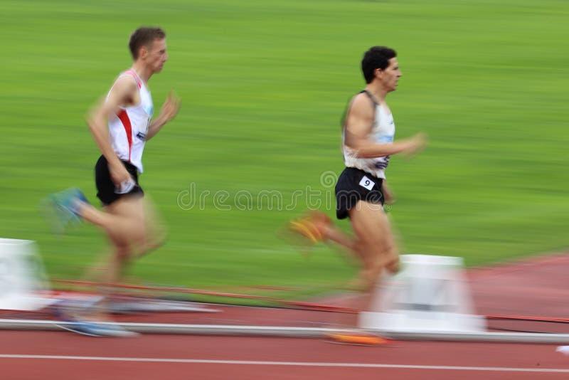 Seitentriebe in 1500 Metern laufen in Prag 2012 lizenzfreies stockfoto