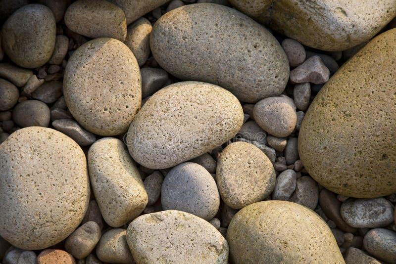 Download Seixos imagem de stock. Imagem de lichen, fundo, areia - 16855075
