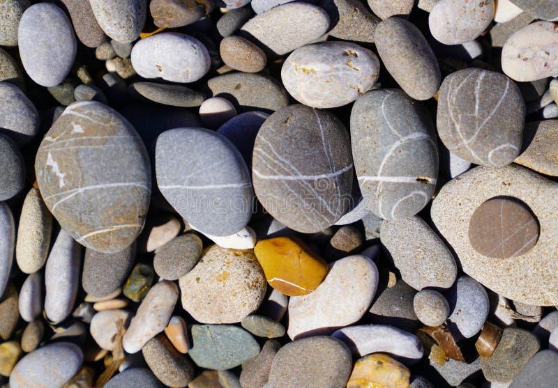 Seixos alisados na praia pelo mar fotos de stock royalty free