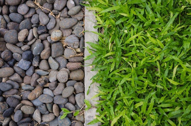 Seixos e gramado verde fotografia de stock royalty free