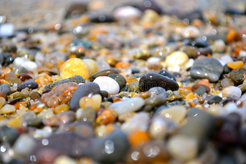 Download Seixos na costa foto de stock. Imagem de praia, profundidade - 65581362