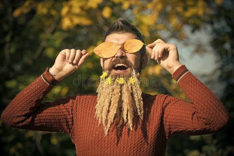 Seizoen en de herfstbladeren met bloem royalty-vrije stock foto's