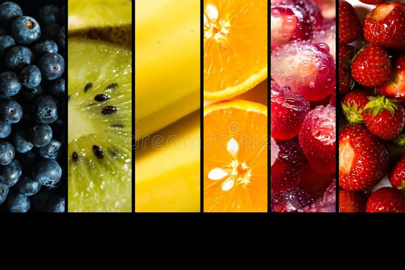 Seizoengebonden die vruchten binnen zij aan zij op zwarte achtergrond met exemplaarruimte worden vertegenwoordigd stock fotografie