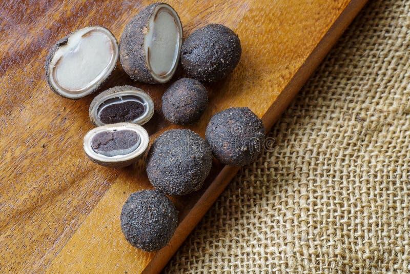 Seizoengebonden puffballpaddestoel in de Aziatische landen van Thailand en, Baro stock fotografie