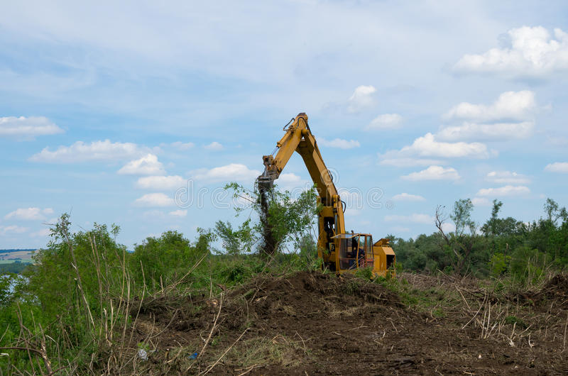 Seizure of forest land for agriculture. Destruction of forests. Destruction of forests. Removing stumps with an excavator. Seizure of forest land for stock image