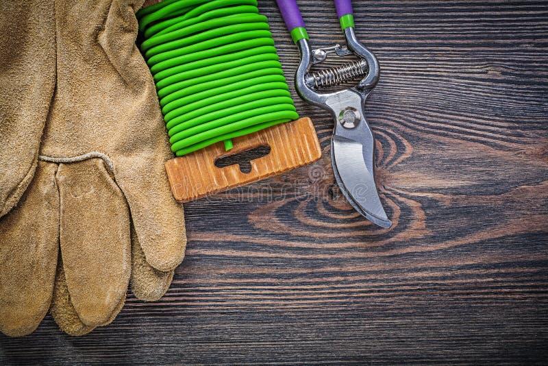 Sekatören piskar för trädgårdbandet för skyddande handskar tråd på träbo royaltyfri foto
