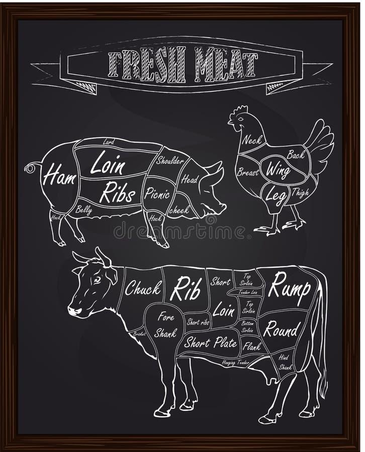 Sekcja diagram świniowaty kurczak i krowa ilustracji