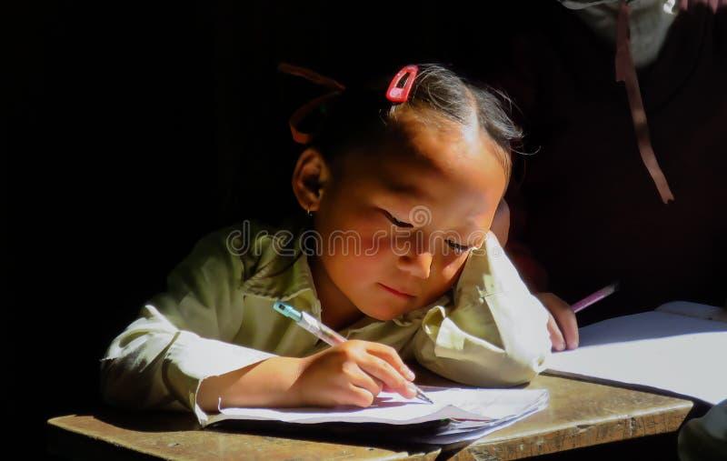 SEKHA SANKHUWASABHA-OMRÅDE, NEPAL - 11/19/2017: skolaflicka som gör läxa royaltyfri foto