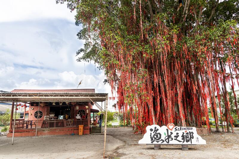 SEKINCHAN, MALAYSIA, February 16, 2020: Sekinchan wishing or hope tree in Pantai Redang is popular tourist destination. Chinese. SEKINCHAN, MALAYSIA, February 16 stock image