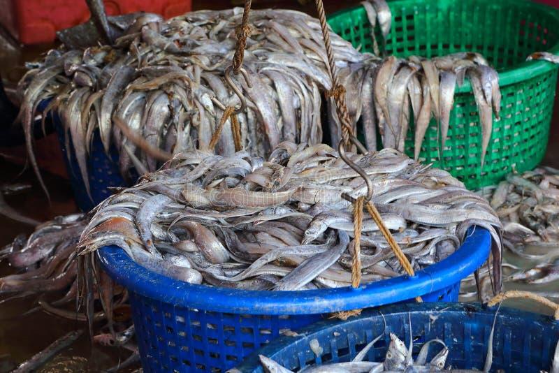 Sekinchan ryba wioska obraz stock