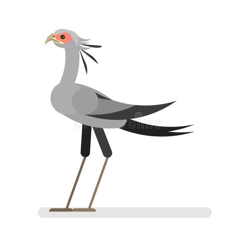 Sekretär Bird Wildes Tier mit bunter Feder vektor abbildung