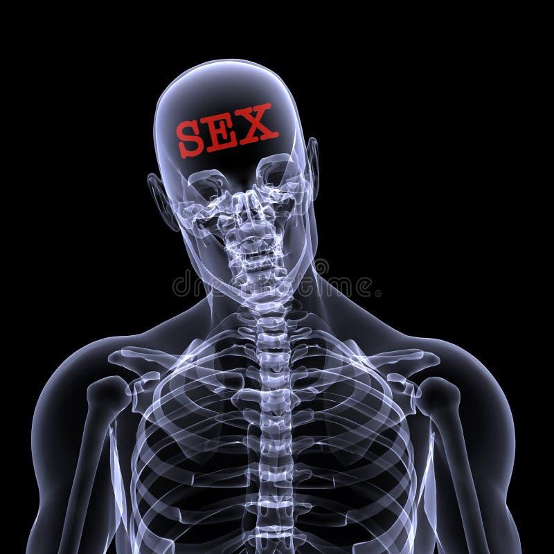 seks mózgu ilustracja wektor