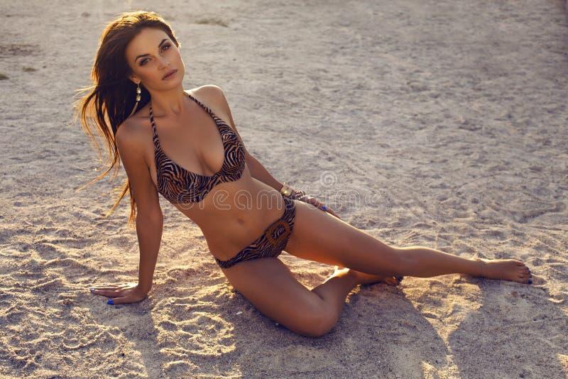 Seksowna brunetka w bikini relaksuje na lato plaży obraz royalty free