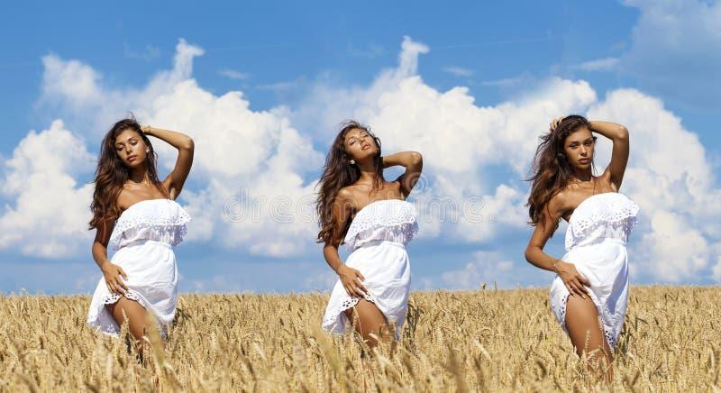 Seksowna młoda kobieta w pszenicznym złotym polu zdjęcia royalty free